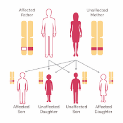 What are BRCA mutations?