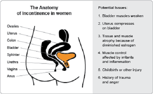 What causes urinary incontinence
