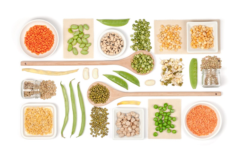 Is a Plant-Based Diet the Right Choice for You?